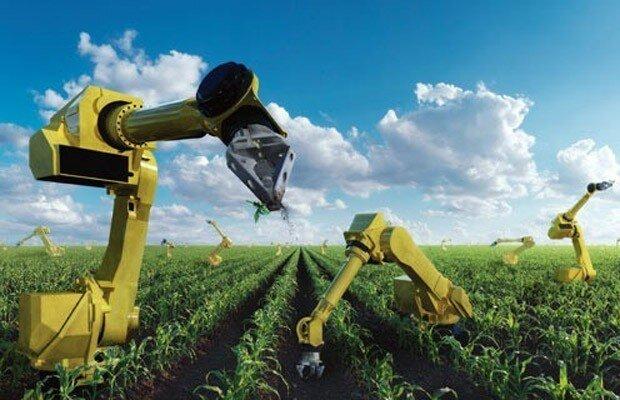 Keren Berikut 6 Teknologi Pertanian Jepang Paling Mutakhir Saat Ini