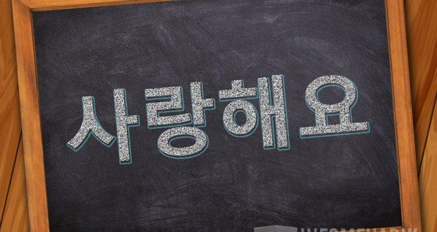 Bahasa Korea Aku Cinta Kamu Lengkap Kalimat Romantis Info Menarik
