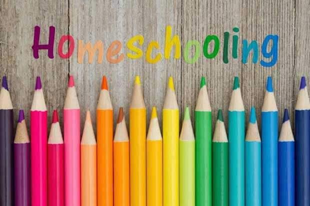 Sekolah Umum Atau Homeschooling