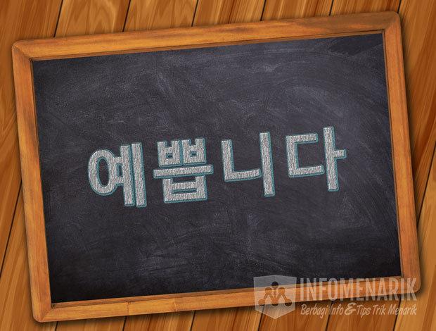 Bahasa Korea Cantik Atau Ganteng